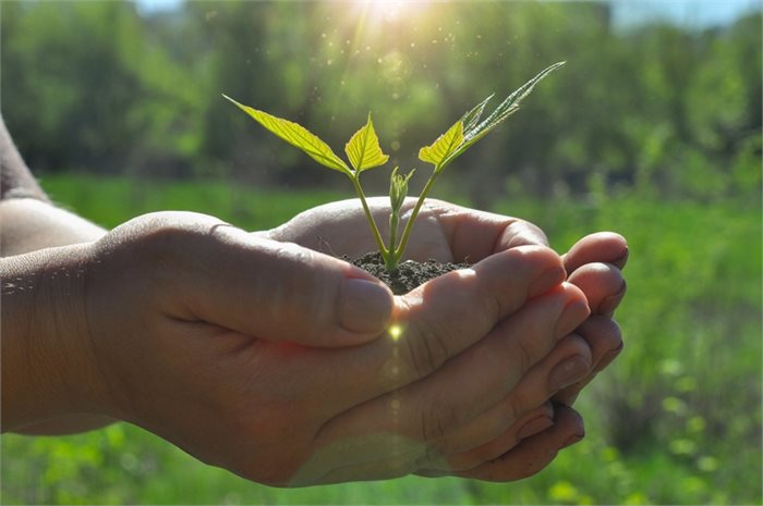 כיצד הרגלים יכולים להפוך את תקופת הבידוד לתקופה של צמיחה?