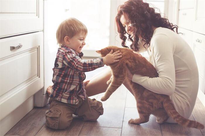 אפשר לסייע לאוטיזם - על שיטת טיפול כוללנית לטיפול בילדים על הרצף