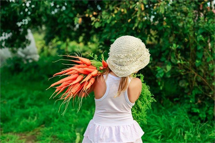 רוצים לעזור למישהו לאכול יותר ירקות? עכשיו יש דרך מדעית!