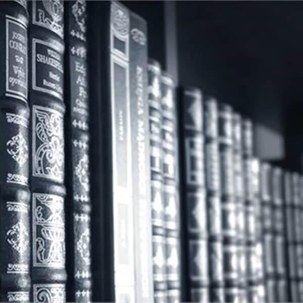 פרקים נבחרים בספרייה של בטיפולנט