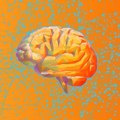 נוירופסיכולוגיה בקליניקה: חקר המוח כתחום פורץ דרך בשדה הטיפולי