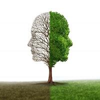 פסיכולוגים רפואיים מדריכים