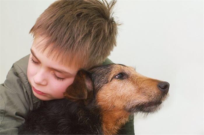 הרבה מעבר לחבר: כיצד יכולים כלבים לסייע לילדים על הרצף האוטיסטי?